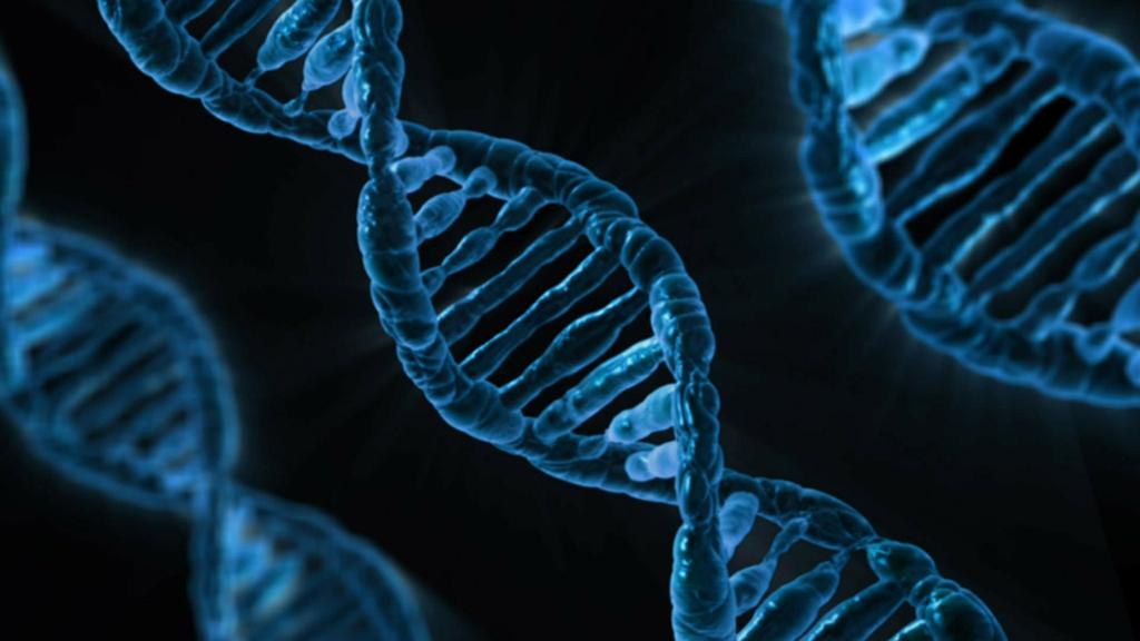 La Scuola di Scienze Biotecnologiche, l'investimento giusto